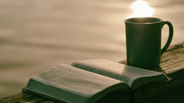 cup_book_reading_114848_602x339.jpg